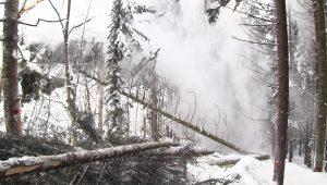研究林冬山造材の記録化