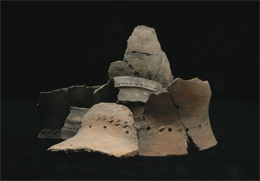 img_archaeology_01