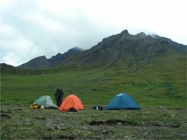 アラスカ州デナリ国立公園恐竜化石調査