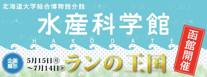 函館水産科学館開催「ランの王国」展
