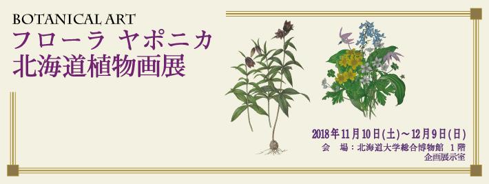 ボタニカルアート「フローラ ヤポニカ北海道植物画展」